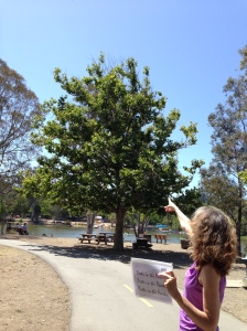 PIP Erica pointing at egret 2